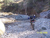 Here is a spot along the Canada Del Oro stream bed.  The trail follows this sream bed for the last few miles as you head to Coronado Camp.  As you can see, there are many rocks and water crossings.  In Nov 2006 I found the trail much more challenging than in 2005 with some difficult rutted areas on very steep inclines... caused by the 2006 Monsoon season.