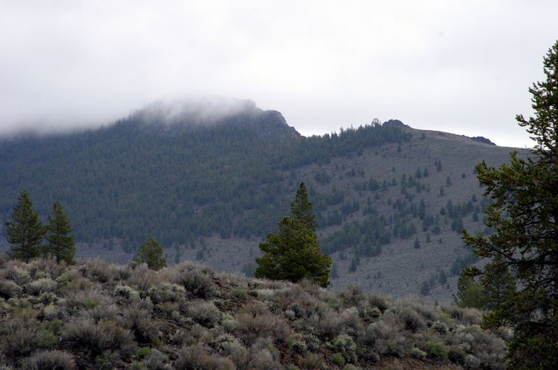 "<font size=""+1"">A couple of last shots of Pine Mountain shrouded in clouds... </font>"