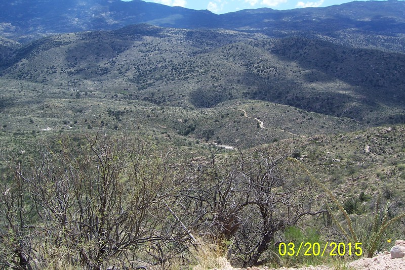 View from Redington Pass Road into Tanque Verde Wash