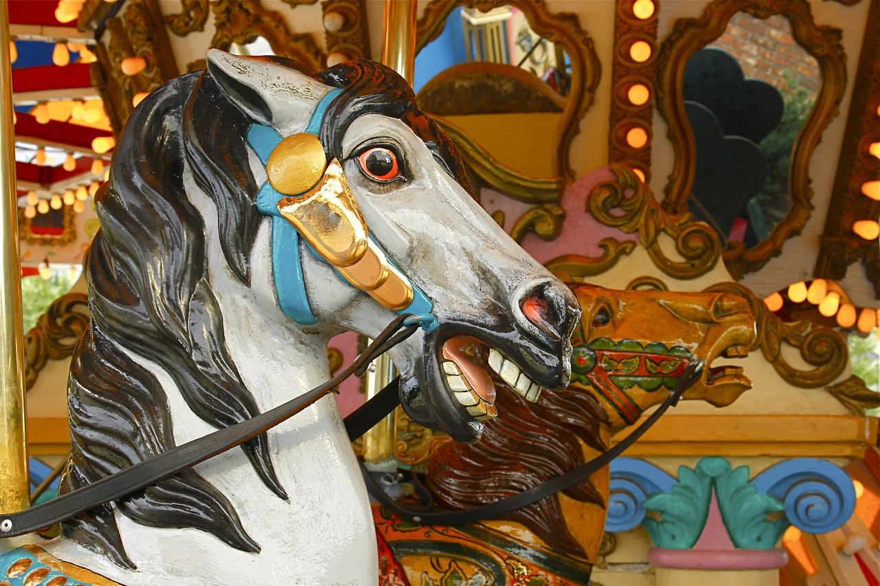 stallions on carousel in Madison, WI.  Summer trip 3K miles 09
