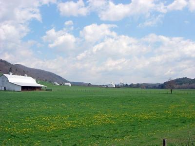 DRZ'n Pocahontas County, W V--Spring 2006