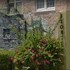 Eau Gallie Florist 1490 Highland Ave