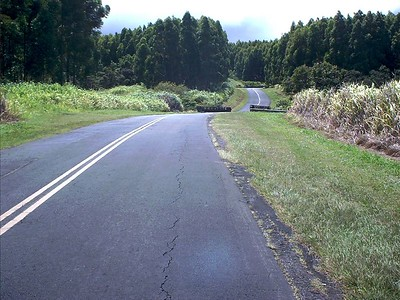 Person's eye view of the road to the house.