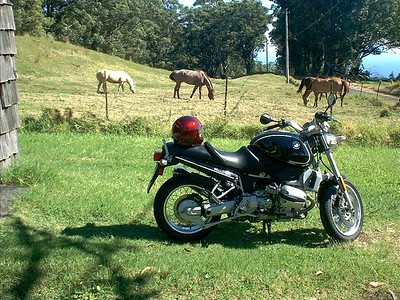 "The older bike with some of the ""neigh""bors in the background (couldn't resist)."