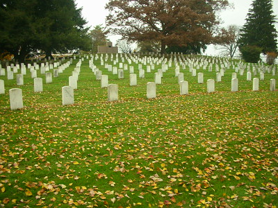 Soldier's Cemetery.