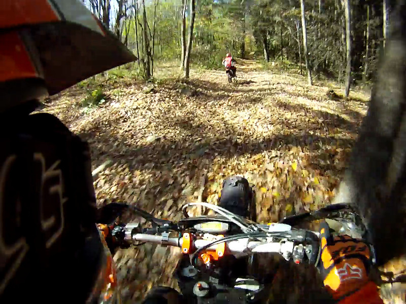 I chase Armando in Bear Town St Forest on a beautiful Oct day in 2012