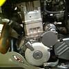 Left side engine: Thumper talk skid plate and engine guard