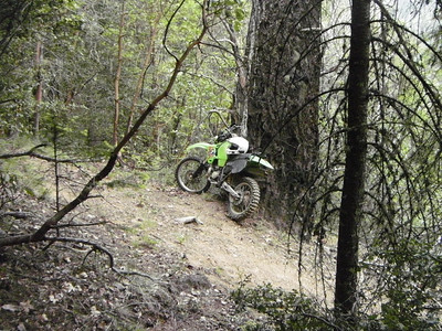 Savage Creek 5/2012