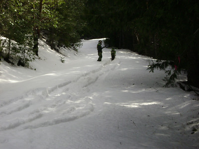 Snow '08