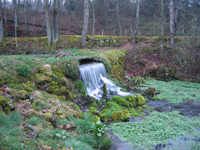 Lush and green year round, due to the constant temperature of the spring's discharge.