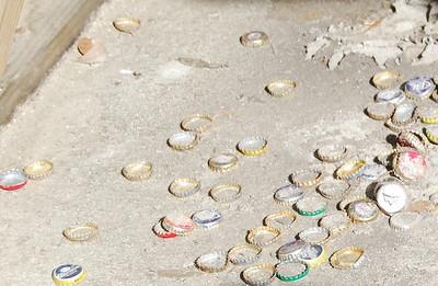 21st Century Seashells