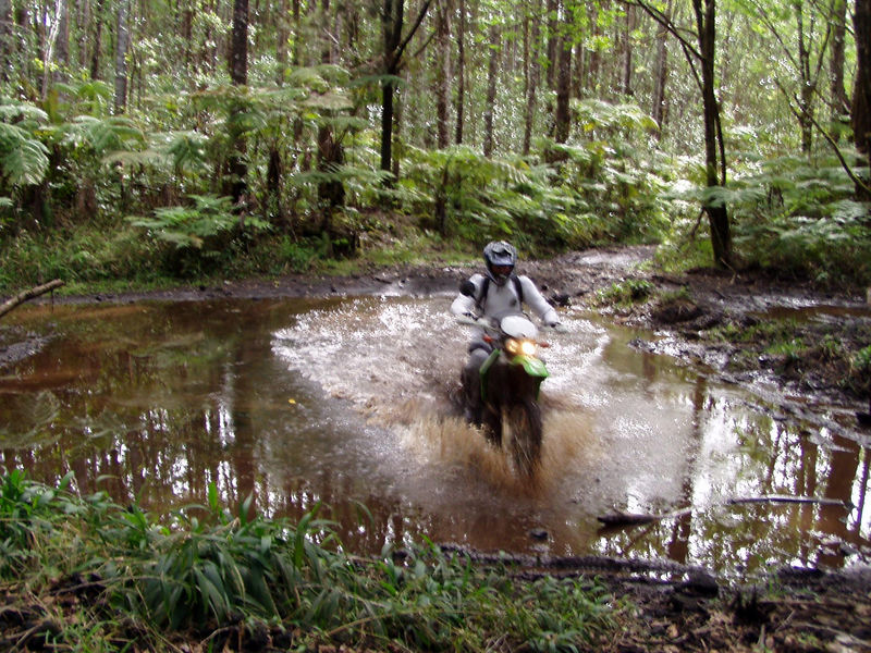 Last ride on the KLX, ripped off four days later.