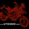 "2/5: Ducati Multistrada 1200 - information resources: <b><a target=""_blank"" href=""http://www.MTS1200.info"">www.MTS1200.info</a></b>"