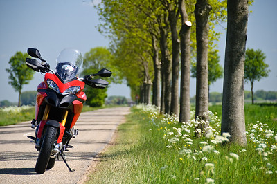 Dutch MTS1200S - 'noknee' (aka Wicek), photo at a delta area called 'De Biesbosch' in the in the southwest of the Netherlands. See Wicek's photo galleries here:  http://fastbike.zenfolio.com/