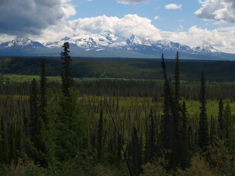 Wrangle Mountains / Sheep Glacier on the Glenn Highway