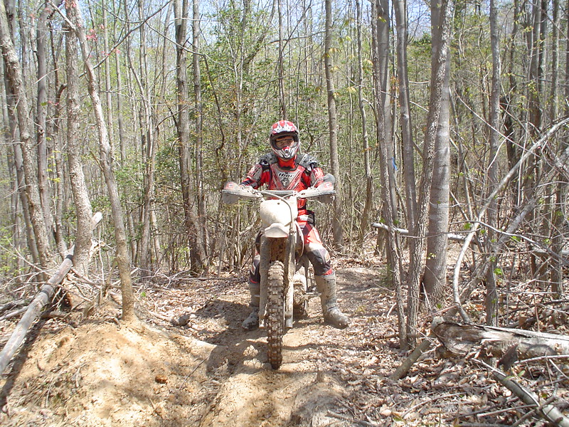 Travis on the CRF230