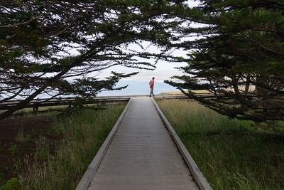 Guy on the boardwalk at MacKerricher State Park.