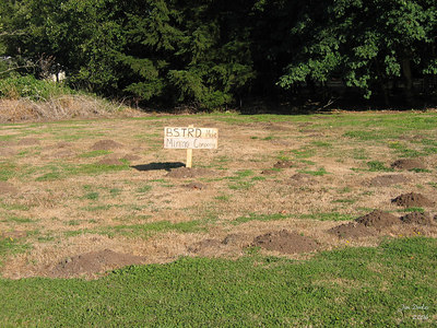 Somebody in Lyons wasn't real happy with the work being done in their front yard.