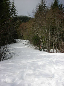 The road up to Green Knob 01/08