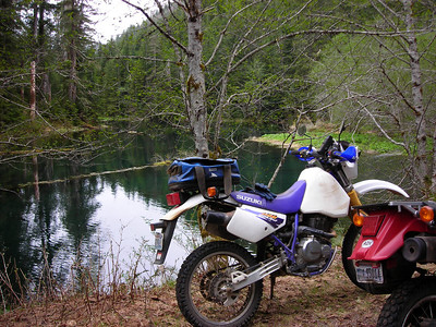 20080601 Near Satsop Lakes E. of Lake Wynoochee.  We were stopped by snow just short of the lakes.