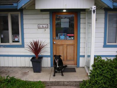 20080526 Roscoe on Raindog's porch