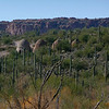 "The Coke Ovens on the Gila River. <a href=""http://www.experience-az.com/adventures/4wd/cokeovens/cokeovens.html"">http://www.experience-az.com/adventures/4wd/cokeovens/cokeovens.html</a>"