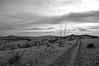 old muleshoe road