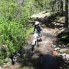 Coming through Pine Creek.
