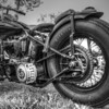 (Original) Low Ride Custom Harley