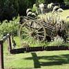 Tophouse garden