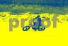 IMG_5284_edited-1