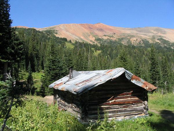 Goldbridge Alpine