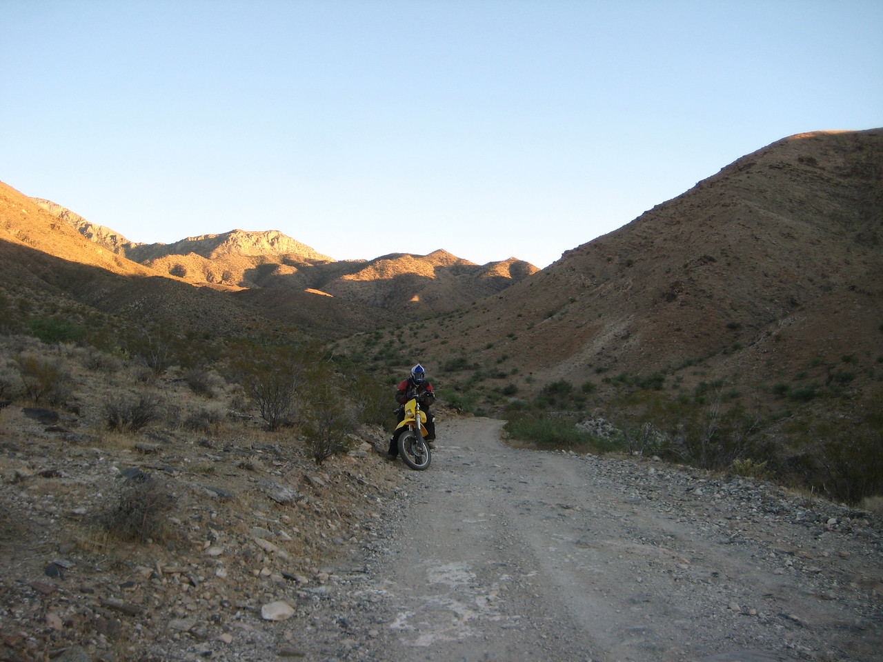 Elbow Canyon, NV - it's in the Virgin Mts outside Mesquite Nevada.
