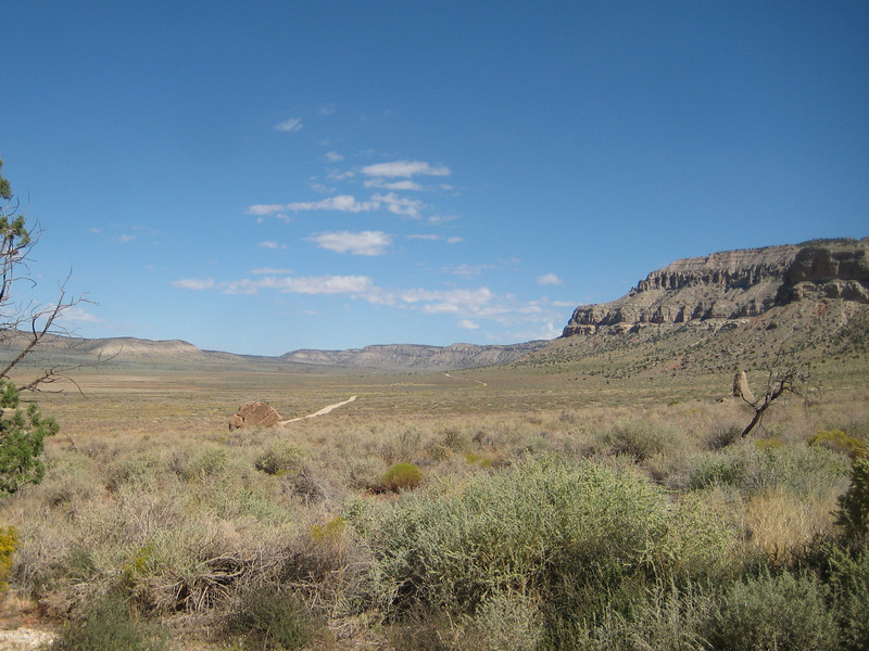 The road, looking north from Tuweep Ranger Station.