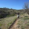 Jeannie running some single track off the Wave Eagle Road.