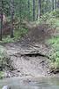 Sat  Moose 2010 020