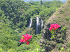 """Opaekaa Falls Ride Report here <a href=""""http://www.advrider.com/forums/showthread.php?t=217718&pp=15"""">http://www.advrider.com/forums/showthread.php?t=217718&pp=15</a>"""