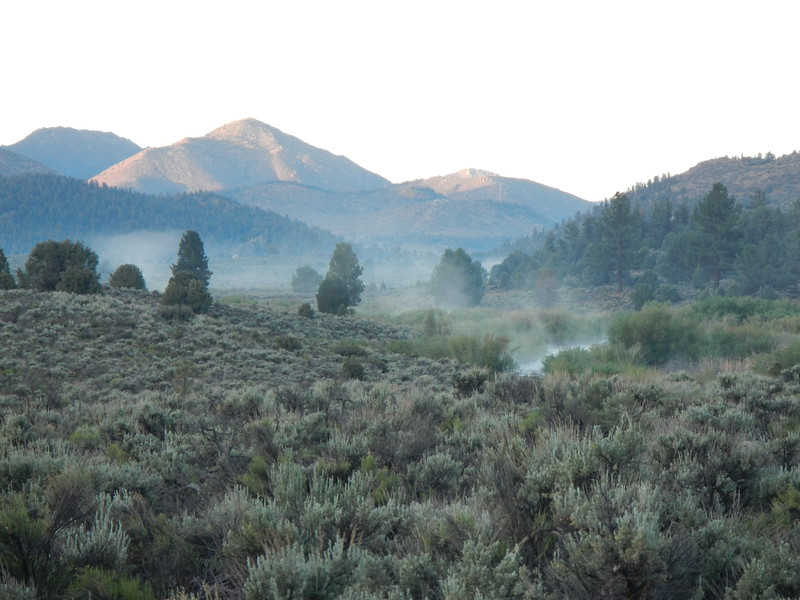 Morning Mist on the South Fork of the Kern River