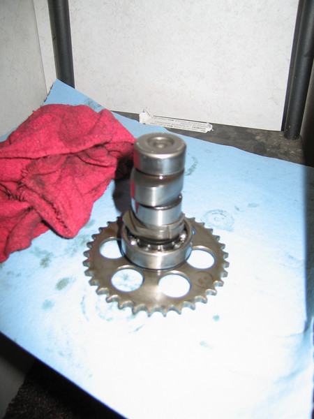 Camshaft, sprocket, and bearings