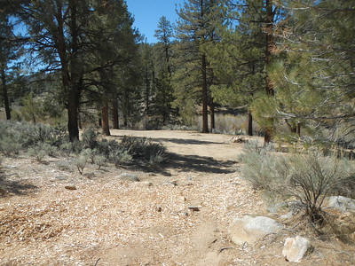 Looking at the lower campground area. You can see the wood chips from the tree removal.