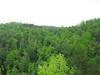 Kentucky 2009 055