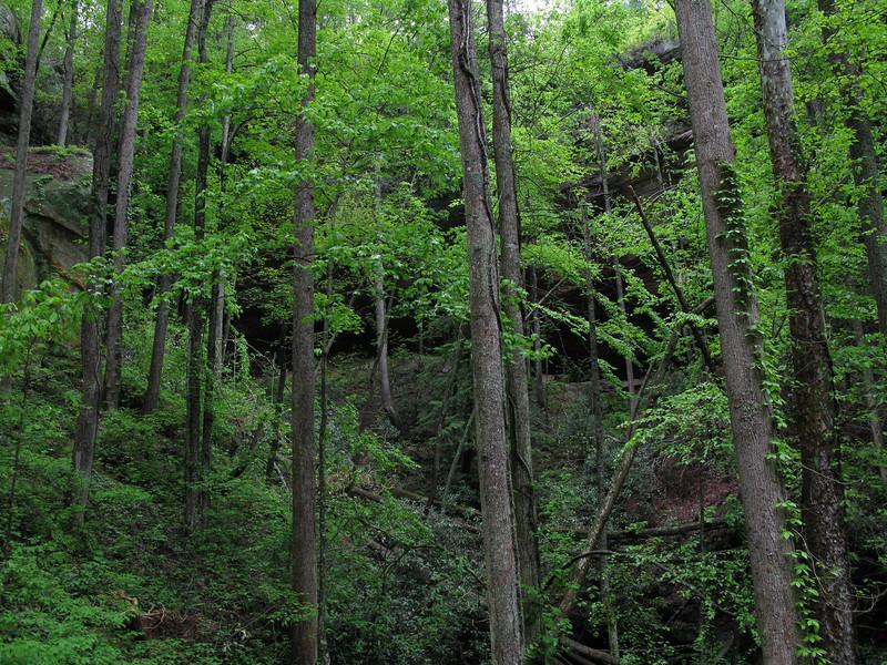 Kentucky 2009 033