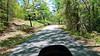 Road to Martin Dam, Cherokee Bluffs, Alabama
