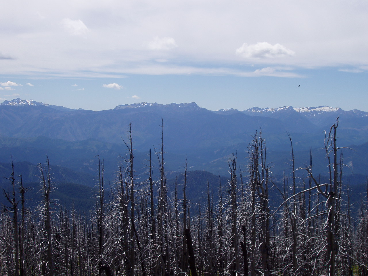 This is the southern most photo in a group of three looking west from Sugarloaf lookout