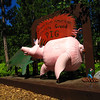 forum a<br /> <br />  Genuine American Corporate Greed Pig vs. Average American Worker, Lakenenland Sculpture Park, Marquette, Mich.