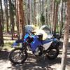 My Yamaha WR250X