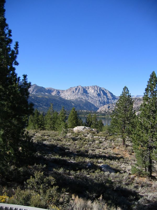 Looking at June Lake (in the distance).