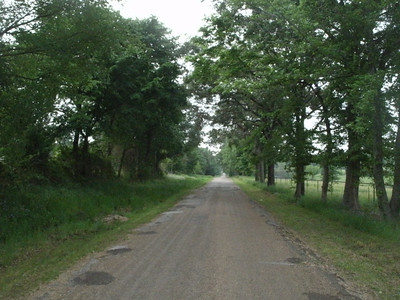 I found a nice county road (CR2217) south of Canton as a cut-off between FM 1651 and TX 19.