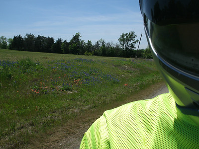 We saw a lot of areas with nice wildflowers.  The Bluebonnets in particular were quite nice.