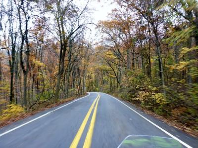 2017 Dying Leaf Ride